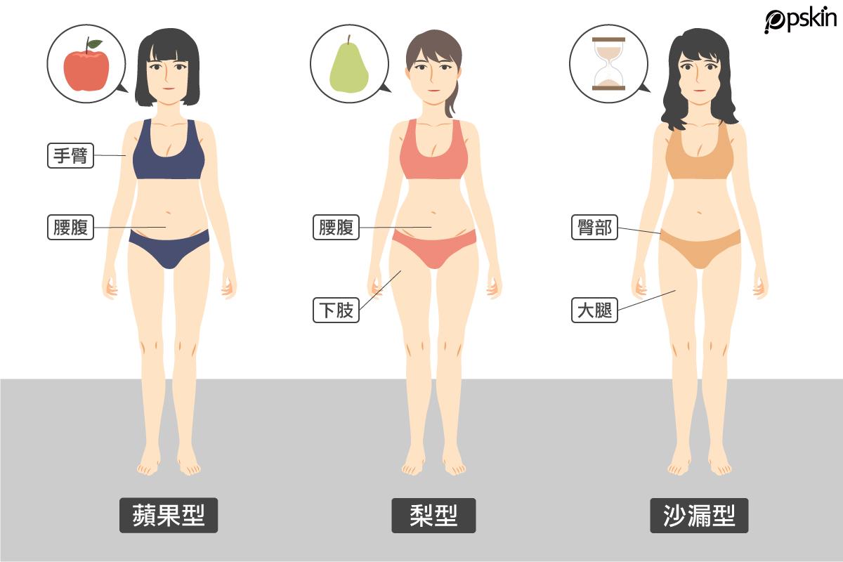 人的身型分成三種