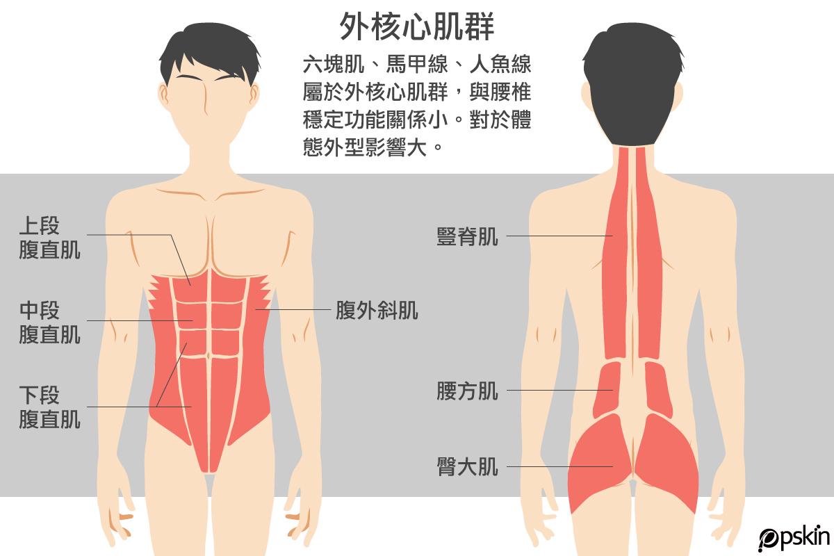 外核心肌群